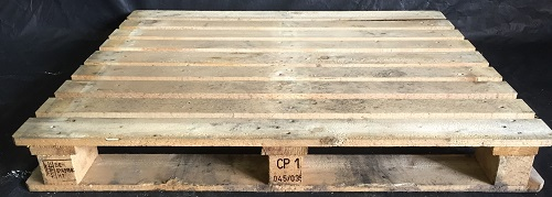 CP1 gebruikt_Woodpacker